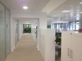 Sectorización, insonorización y correción acústica en oficinas  barreras fónicas, tabiques acústicos vegetales y confort acústicos en techos