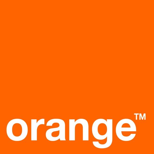 logo_orange2